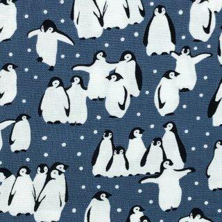ペンギン ブルーグレー