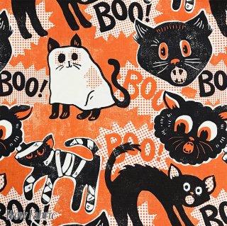 Boo! ハロウィン猫