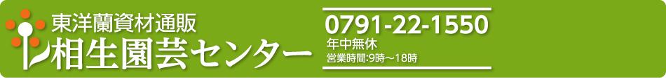 相生園芸センター 東洋蘭資材通販 春蘭 中国蘭 中国春蘭 寒蘭 栽培方も質問下さい。