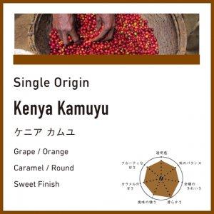 【中煎り】ケニア/カムユ
