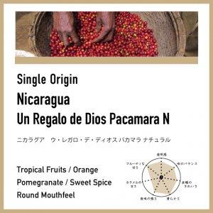 【浅煎り】ニカラグア/ウ・レガロ・デ・ディオス パカマラ ナチュラル