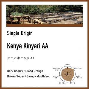 【中煎り】ケニア/キニャリAA