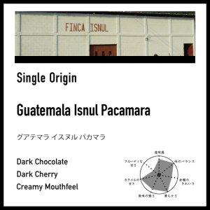 【深煎り】グアテマラ / イスヌル・パカマラ