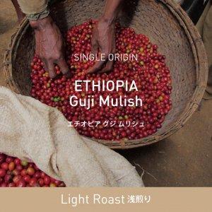 エチオピア / グジ・ムリシュ