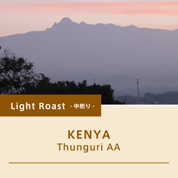 ケニア/ツングリAA