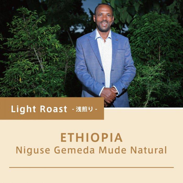【浅煎り:68g】エチオピア/ニグセ・ゲメダ・ムデ ナチュラル 2020COE#1