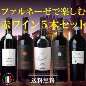 送料無料 ファルネーゼで楽しむ赤ワイン5本セット