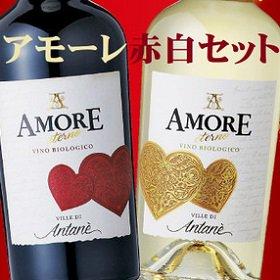 送料無料 アモーレ 赤白ワインセット