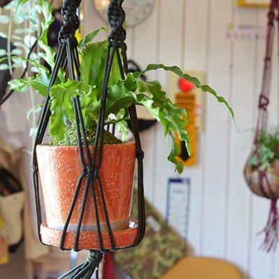 "Plant Hanger ""Para"