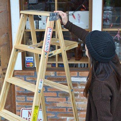Michigan Ladder  6step