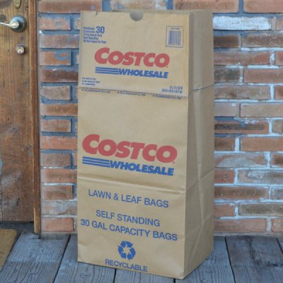 Costco Paper Bag