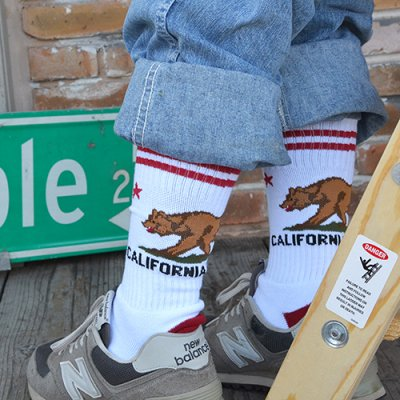 California Grizzly Socks