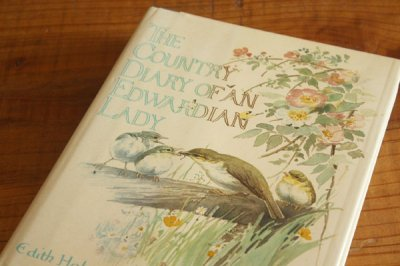 洋古書 The Country Diary