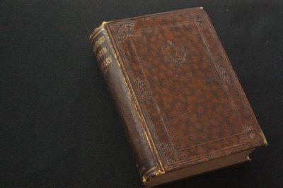 洋古書 New Standard Dictionary