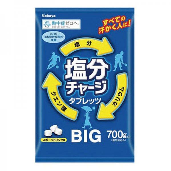 塩分チャージタブレッツBIG[700g/約236粒]【1袋】