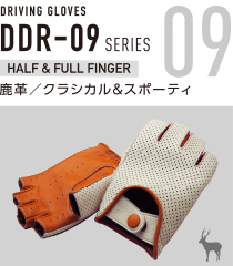 DDR-09 SERIES