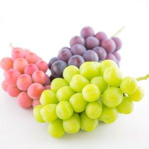 AminatureFruitsの旬の葡萄3色詰合せ<br>各1房(約2.0kg)
