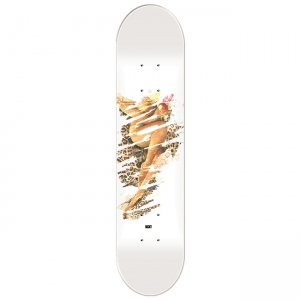 <img class='new_mark_img1' src='https://img.shop-pro.jp/img/new/icons5.gif' style='border:none;display:inline;margin:0px;padding:0px;width:auto;' />BECKY FACTORY GIRL #1 DECK / 8.3