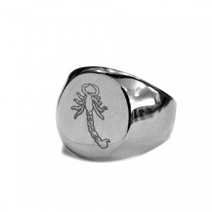 <img class='new_mark_img1' src='https://img.shop-pro.jp/img/new/icons5.gif' style='border:none;display:inline;margin:0px;padding:0px;width:auto;' />CASTLE SCORPION STERLING SILVER SIGNET RING (キャッスル/リング)