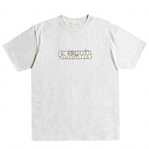 <img class='new_mark_img1' src='https://img.shop-pro.jp/img/new/icons5.gif' style='border:none;display:inline;margin:0px;padding:0px;width:auto;' />HORRIBLE'S PLUMP T-SHIRT / ASH (ホリブルズ Tシャツ)