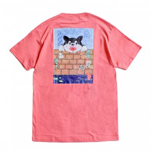 <img class='new_mark_img1' src='https://img.shop-pro.jp/img/new/icons1.gif' style='border:none;display:inline;margin:0px;padding:0px;width:auto;' />SAYHELLO FANTASY TEE / CORAL (セイハロー / Tシャツ)