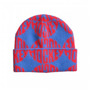 <img class='new_mark_img1' src='https://img.shop-pro.jp/img/new/icons5.gif' style='border:none;display:inline;margin:0px;padding:0px;width:auto;' />HOCKEY SEWER BEANIE / NAVY (ホッキー ビーニー/ニットキャップ)
