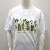 山菜プリントTシャツ(白)