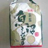 ライス・ワン 令和2年産 外山米一の魚沼産コシヒカリ 5kg 紙袋