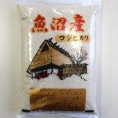 ライス・ワン 令和2年産 外山米一の魚沼産コシヒカリ  玄米5kg