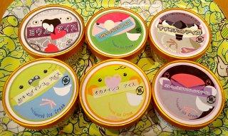 インコアイス全種セット(12個セット)