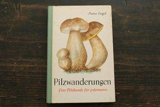 きのこ図鑑「Pilzwanderungen」1963年/ドイツ