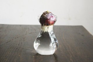 ガラスの花瓶(水栽培クリアボール)/ドイツ