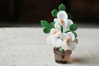 植木鉢に咲くガラスの花(白)/チェコ