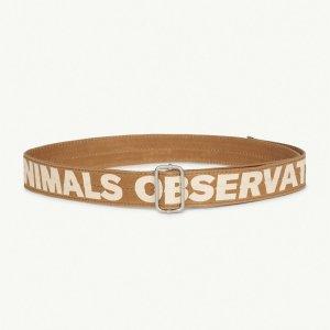 TAO / THE ANIMALS OBSERVATORY / LIZARD KIDS BELT / BROWN