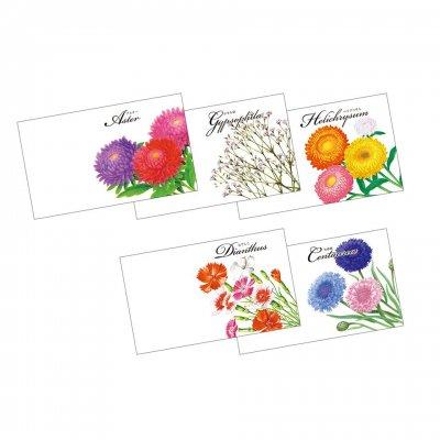 横型イラスト花の種子 1個