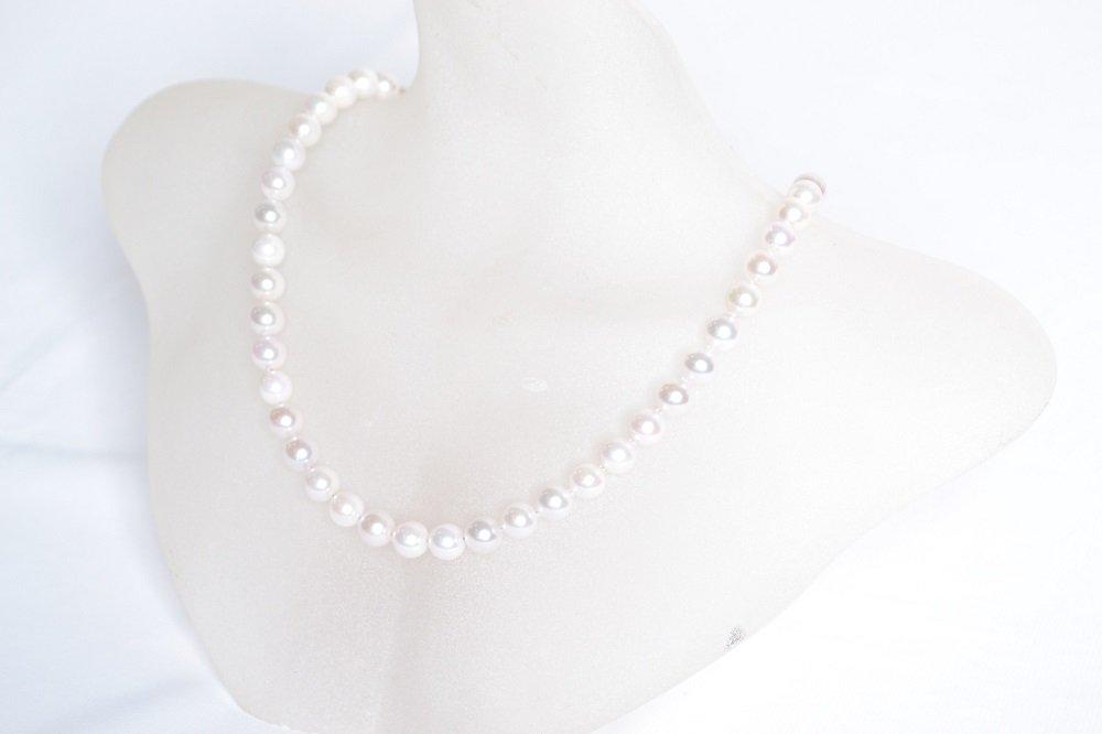 ジュエリーレンタル。あらゆるスタイルに似合う清楚な真珠レンタル(白)(7.0mm-7.5mm) 【送料無料】