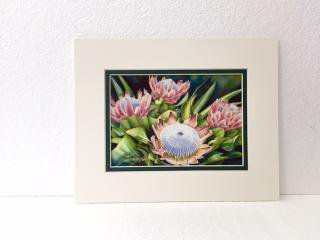 <img class='new_mark_img1' src='https://img.shop-pro.jp/img/new/icons21.gif' style='border:none;display:inline;margin:0px;padding:0px;width:auto;' />GARRY PALM watercolors アート  King Proteas #1