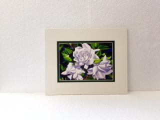 <img class='new_mark_img1' src='https://img.shop-pro.jp/img/new/icons21.gif' style='border:none;display:inline;margin:0px;padding:0px;width:auto;' />GARRY PALM watercolors アート WHITE GARDENIAS