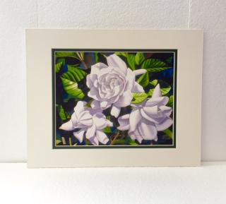 <img class='new_mark_img1' src='//img.shop-pro.jp/img/new/icons21.gif' style='border:none;display:inline;margin:0px;padding:0px;width:auto;' />GARRY PALM watercolors アート WHITE GARDENIAS  (中)