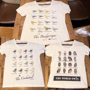 鳥カフェオリジナルUネック半袖Tシャツ 世界のふくろう、オカメ、セキセイ