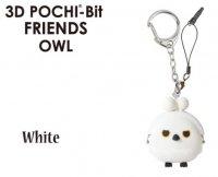 3D POCHI-BIT FRIENDS シロフクロウ フクロウ(グレー) フクロウ(ブラウン)