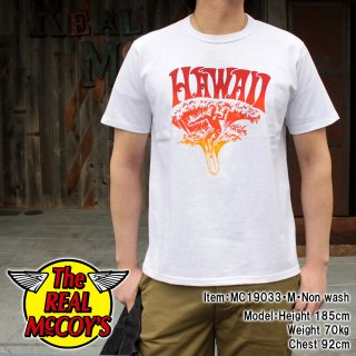 <img class='new_mark_img1' src='https://img.shop-pro.jp/img/new/icons15.gif' style='border:none;display:inline;margin:0px;padding:0px;width:auto;' />JOE MCCOY TEE / HAWAII Tシャツ