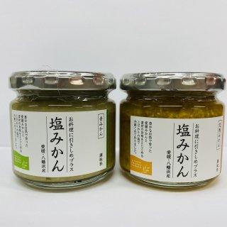 塩みかん(青・完熟) 2種