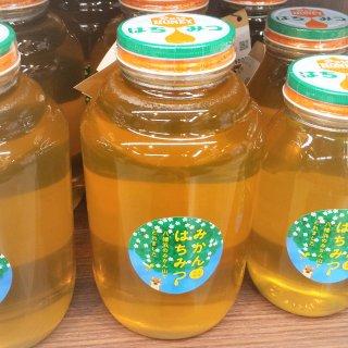 みかん蜂蜜(菊池養蜂)