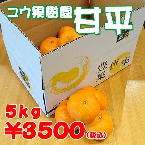 甘平【コウ果樹園】5kg