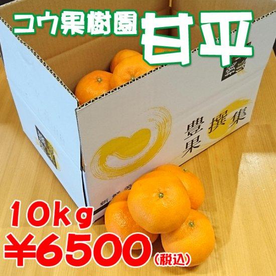 甘平【コウ果樹園】10kg