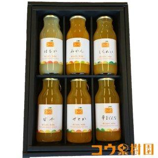 柑橘ジュース小瓶6本セット【コウ果樹園】