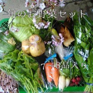 愛媛県西予市産「旬のお野菜セット」 7〜8品目