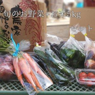 愛媛県西予市産「旬のお野菜7〜8品目+お米5kgセット」