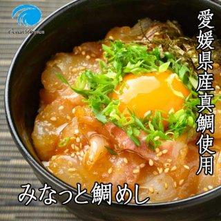 【冷凍】愛媛真鯛 みなっと鯛めしの素 5パックセット【オーシャンドリーム】